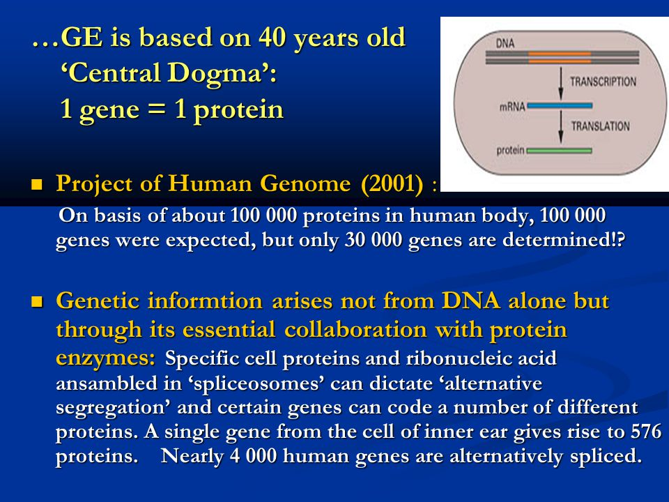 …GE is based on 40 years old 'Central Dogma': 1 gene = 1 protein Project of Human Genome (2001) : Project of Human Genome (2001) : On basis of about 1