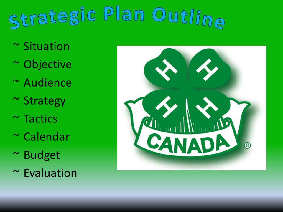 ~Situation ~Objective ~Audience ~Strategy ~Tactics ~Calendar ~Budget ~Evaluation