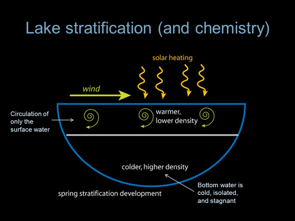 Lake stratification (and chemistry) Bottom water is cold, isolated, and stagnant Circulation of only the surface water
