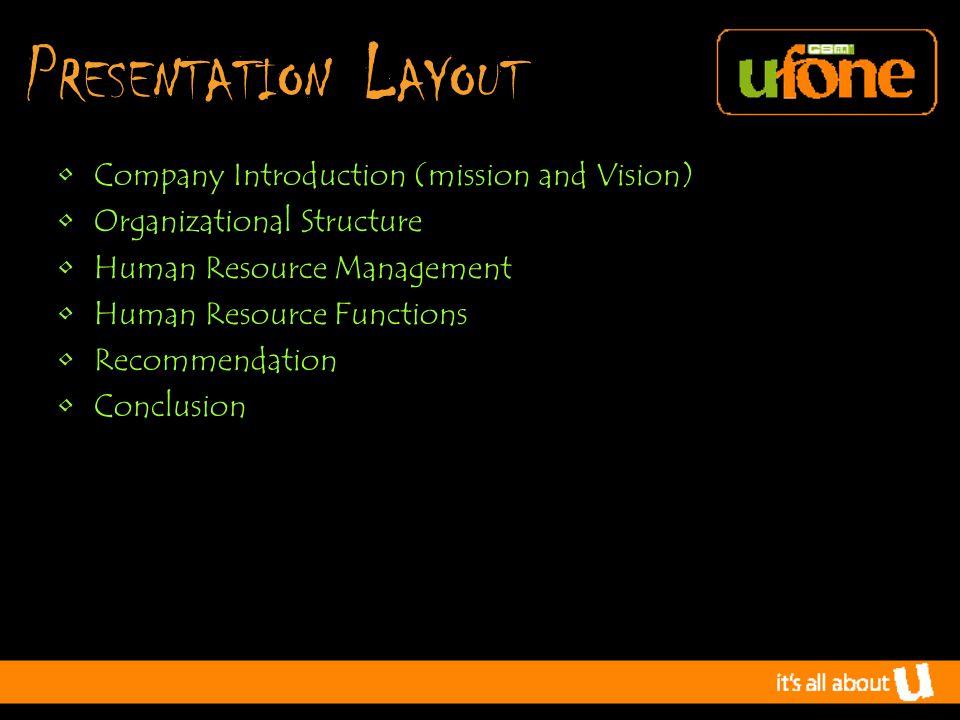 O rganizational S tructure Analysis Hybrid Organizational Structure.