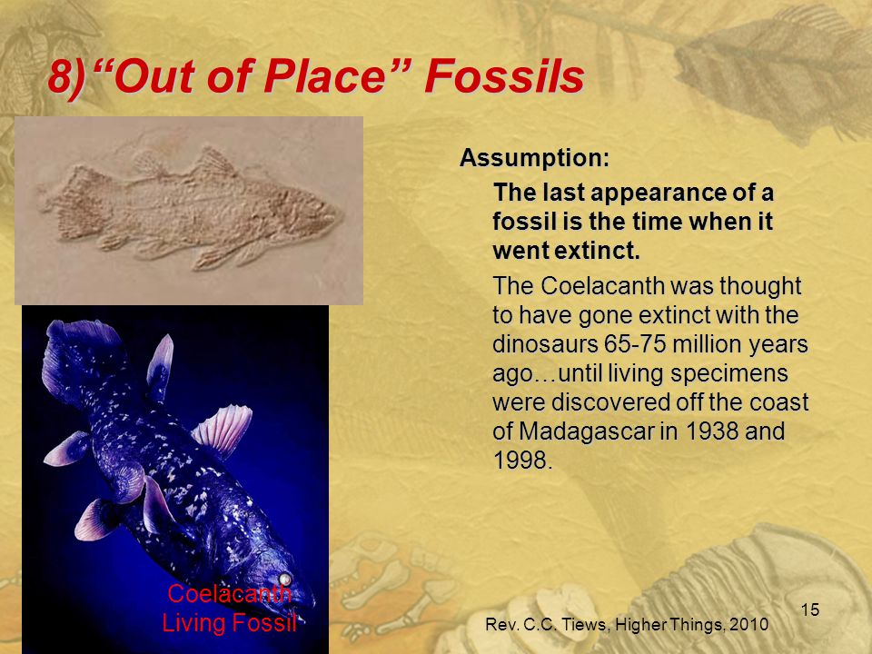 8 ) Out of Place Fossils Assumption: The last appearance of a fossil is the time when it went extinct.