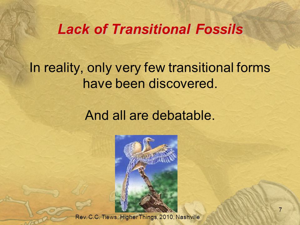 Lack of Transitional Fossils Lack of Transitional Fossils In reality, only very few transitional forms have been discovered.