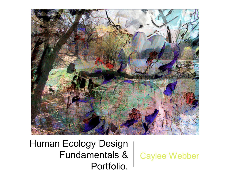 Human Ecology Design Fundamentals & Portfolio. Caylee Webber
