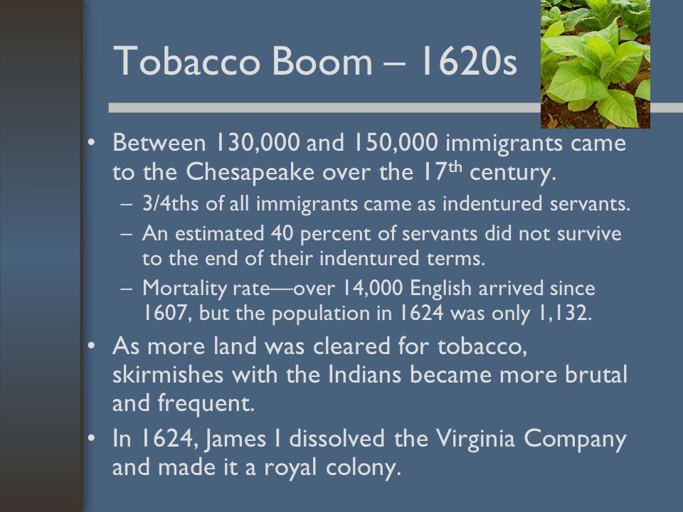 Tobacco Boom – 1620s Between 130,000 and 150,000 immigrants came to the Chesapeake over the 17 th century. –3/4ths of all immigrants came as indenture