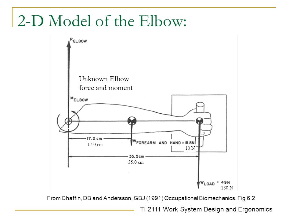 TI 2111 Work System Design and Ergonomics 2-D Model of the Elbow: From Chaffin, DB and Andersson, GBJ (1991) Occupational Biomechanics.
