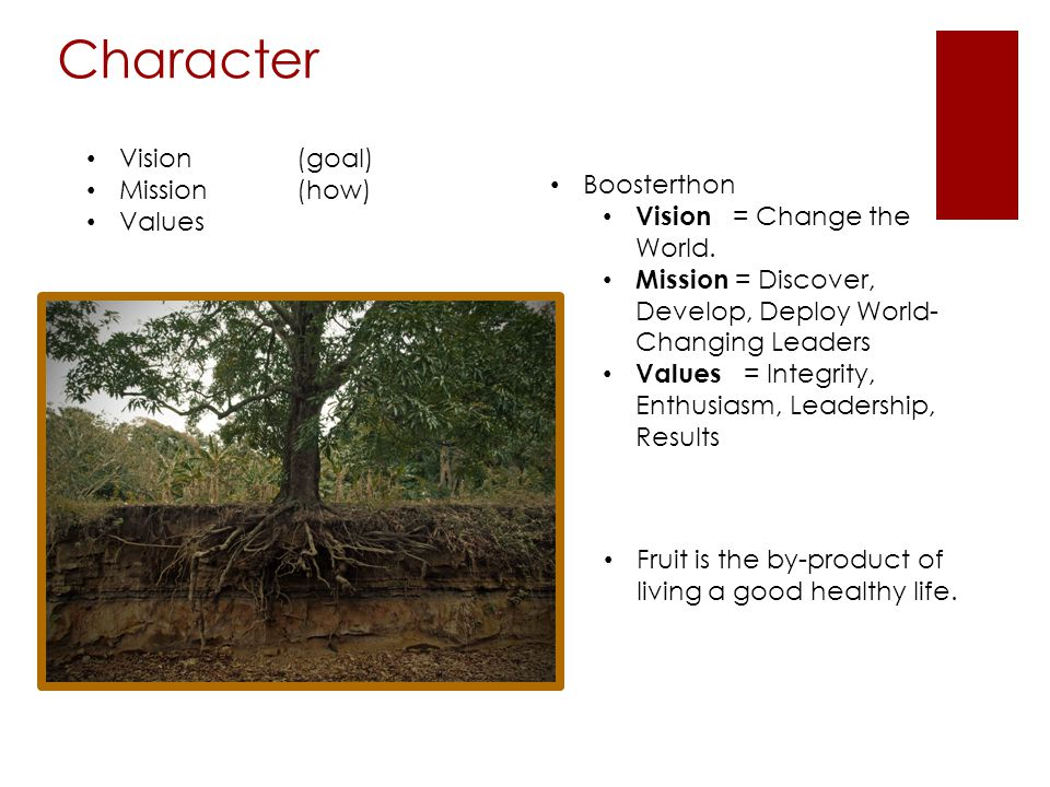 Character Fruit is the by-product of living a good healthy life.