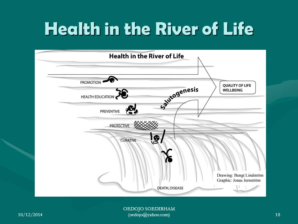 Health in the River of Life 10/12/2014 OEDOJO SOEDIRHAM (oedojo@yahoo.com)18