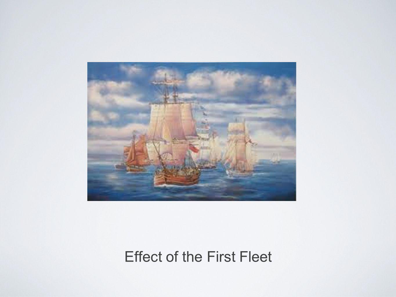 Effect of the First Fleet