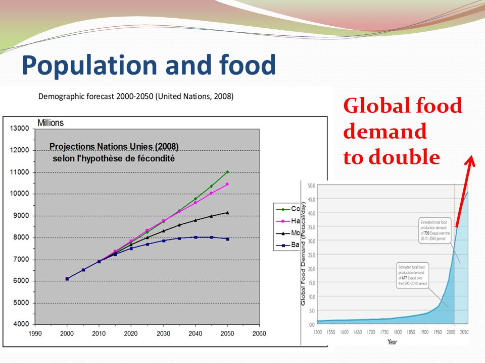 Population and food Global food demand to double