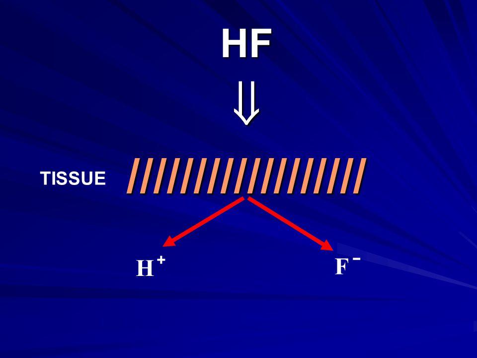 HF  ////////////////// TISSUE + H - F