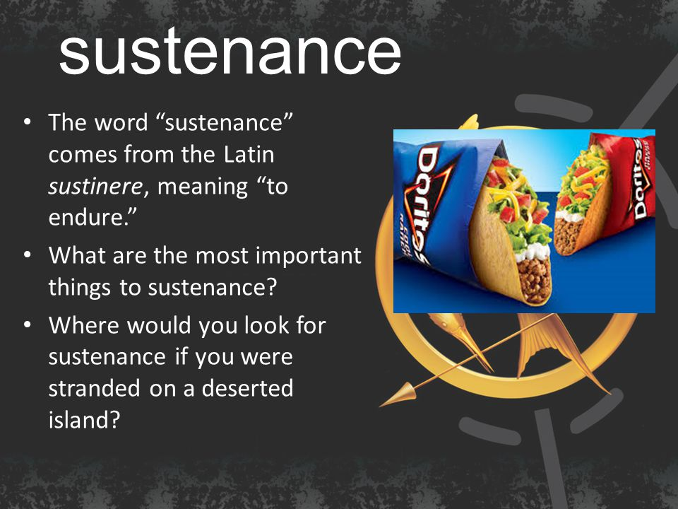 sustenance The word sustenance comes from the Latin sustinere, meaning to endure. What are the most important things to sustenance.