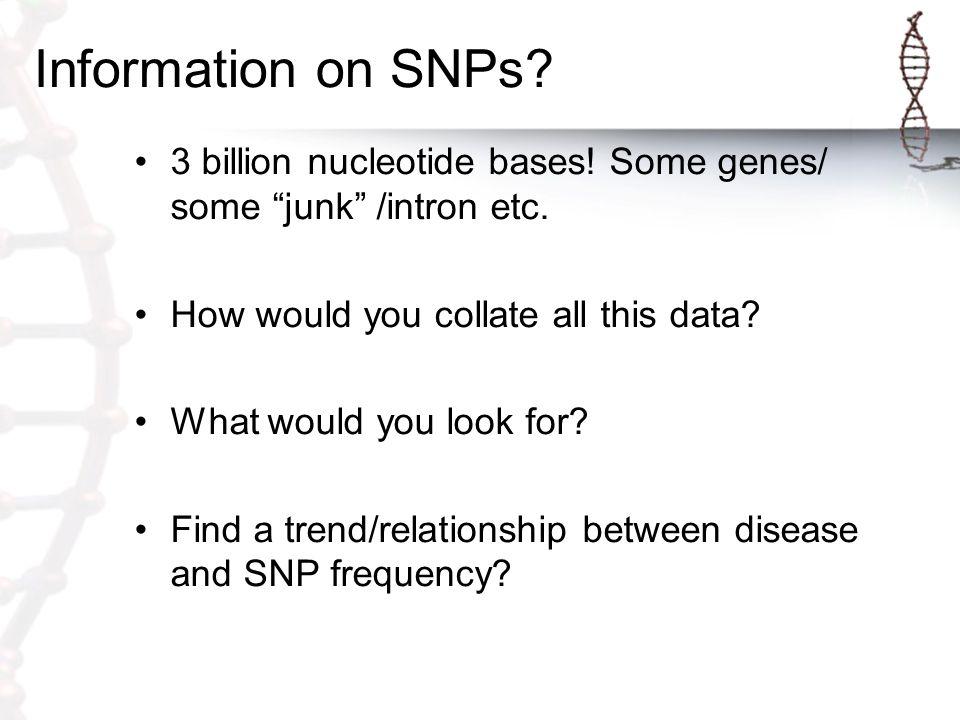 Information on SNPs. 3 billion nucleotide bases. Some genes/ some junk /intron etc.
