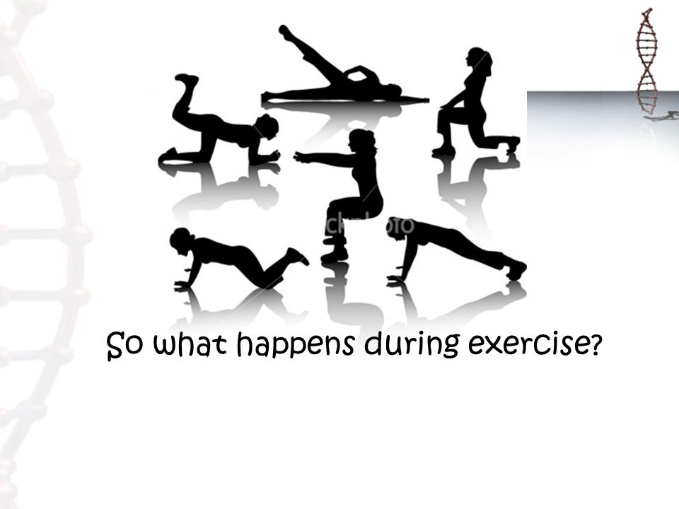 So what happens during exercise?