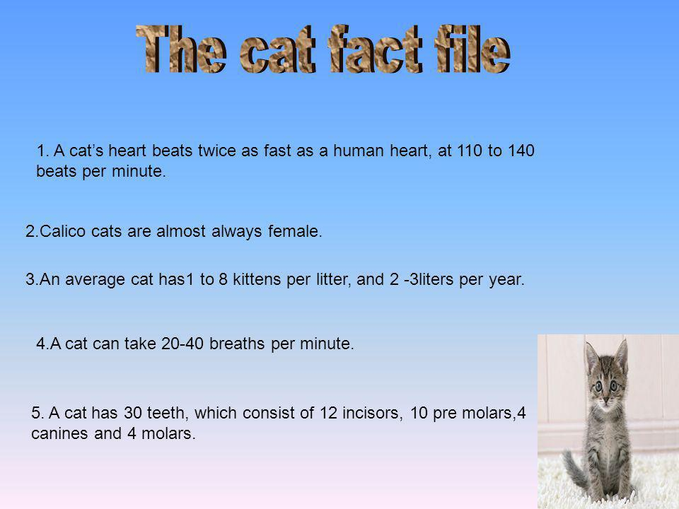 1.A cat's heart beats twice as fast as a human heart, at 110 to 140 beats per minute.