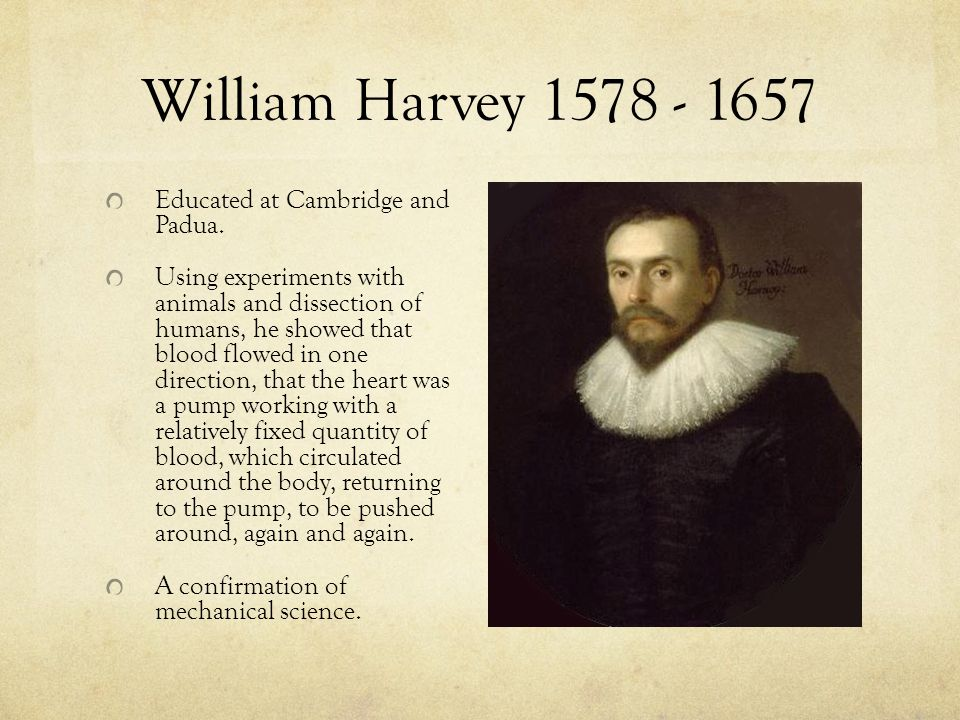 William Harvey 1578 - 1657 Educated at Cambridge and Padua. Using experiments with animals and dissection of humans, he showed that blood flowed in on