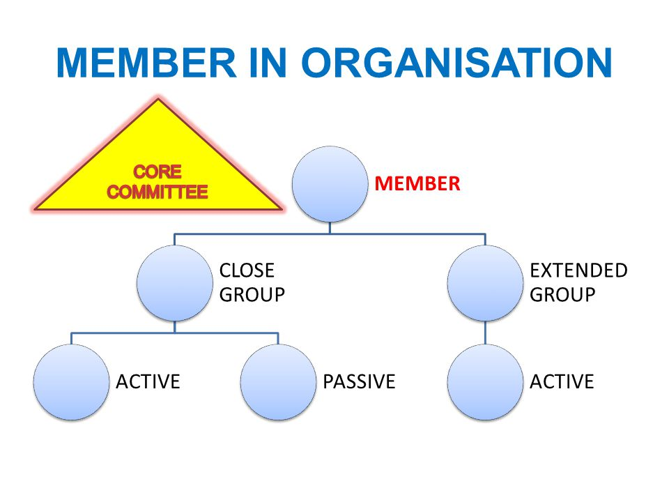 MEMBER IN ORGANISATION MEMBER CLOSE GROUP ACTIVEPASSIVE EXTENDED GROUP ACTIVE
