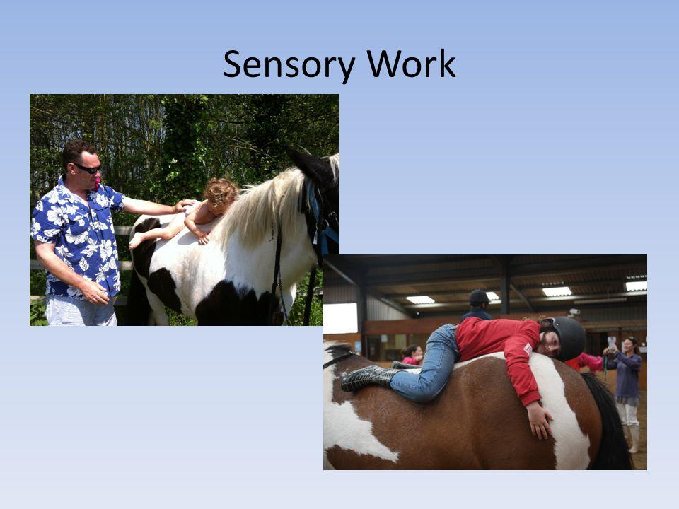 Sensory Work