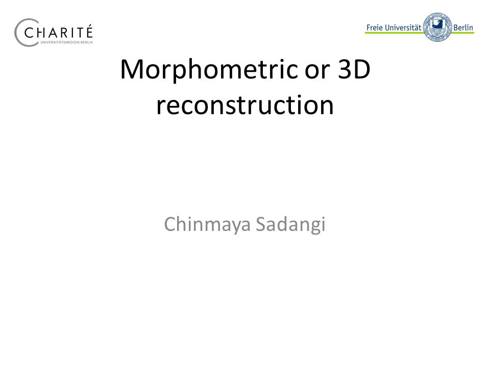 Morphometric or 3D reconstruction Chinmaya Sadangi