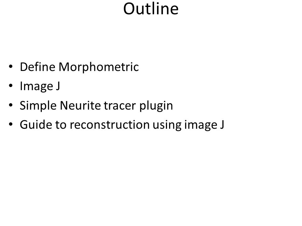 Morphometry Studies on brain shape has given immense data Morphometric measurements have been obtained from brain regions that can be clearly defined and results in a lot of findings related to these measurements.