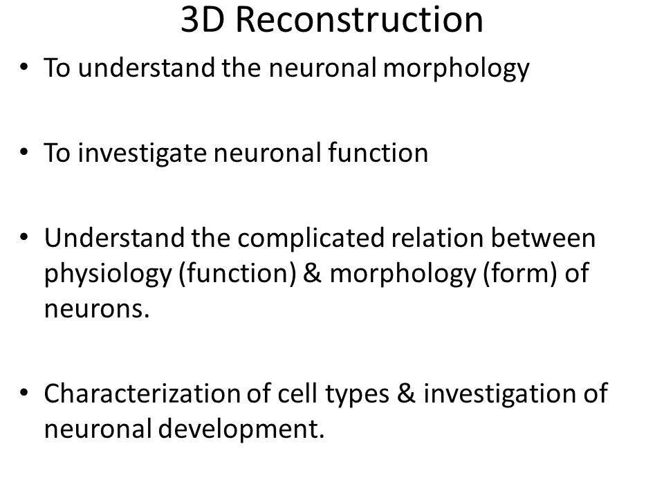 3D Reconstruction To understand the neuronal morphology To investigate neuronal function Understand the complicated relation between physiology (function) & morphology (form) of neurons.