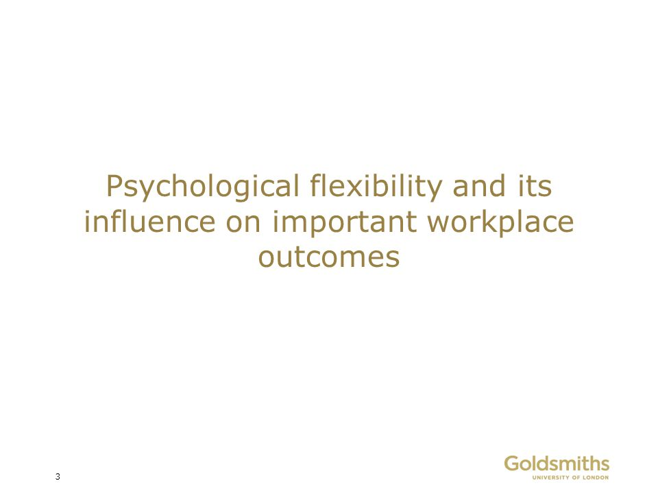 Psychological flexibility and its influence on important workplace outcomes 3