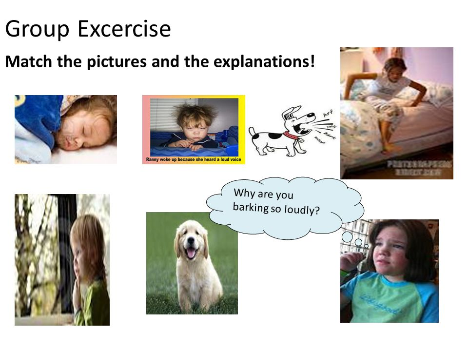 Group Excercise Why are you barking so loudly? Match the pictures and the explanations!