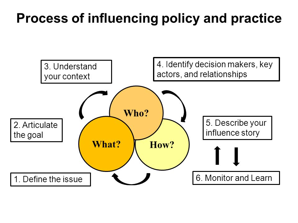 How. Process of influencing policy and practice Who.