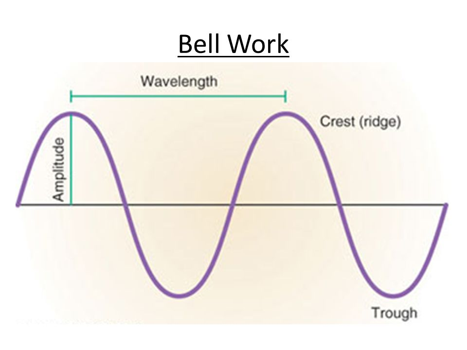 Bell Work Draw a Transverse Wave and label its crest, trough, amplitude, and wavelength.