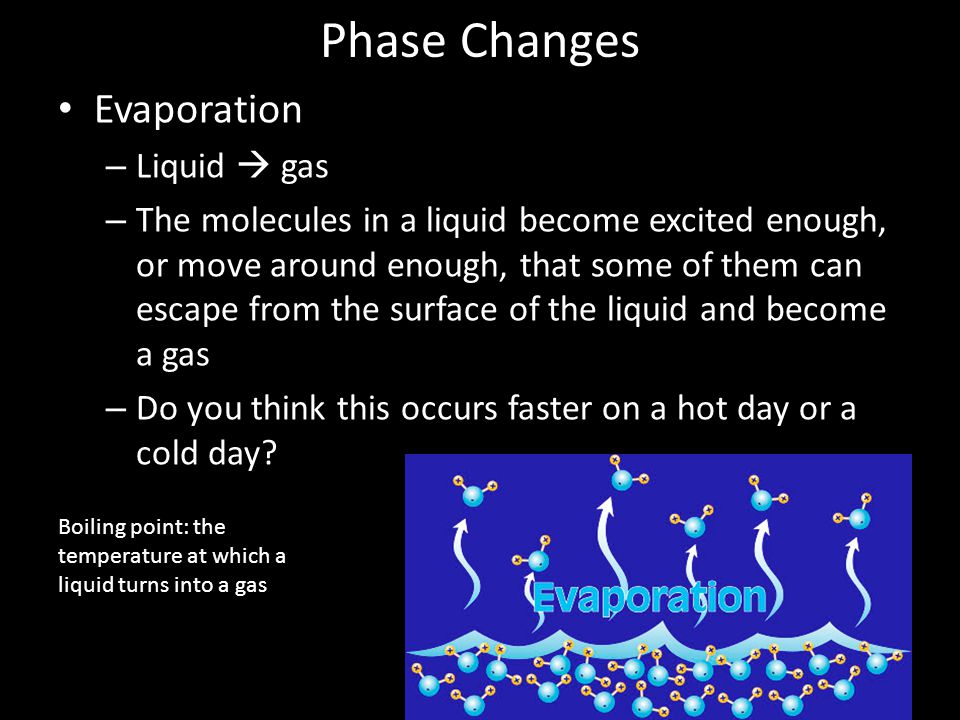 Phase Changes Evaporation – Liquid  gas – The molecules in a liquid become excited enough, or move around enough, that some of them can escape from the surface of the liquid and become a gas – Do you think this occurs faster on a hot day or a cold day.