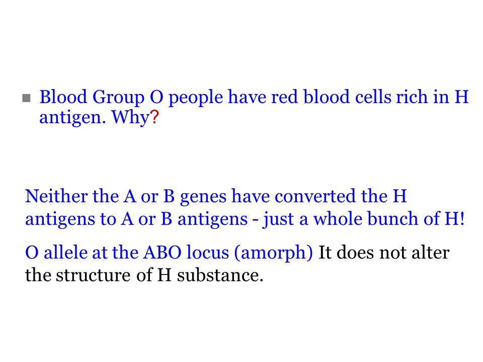 Genetics The H antigen is found on the RBC when you have the Hh or HH genotype, but NOT from the hh genotype The A antigen is found on the RBC when yo