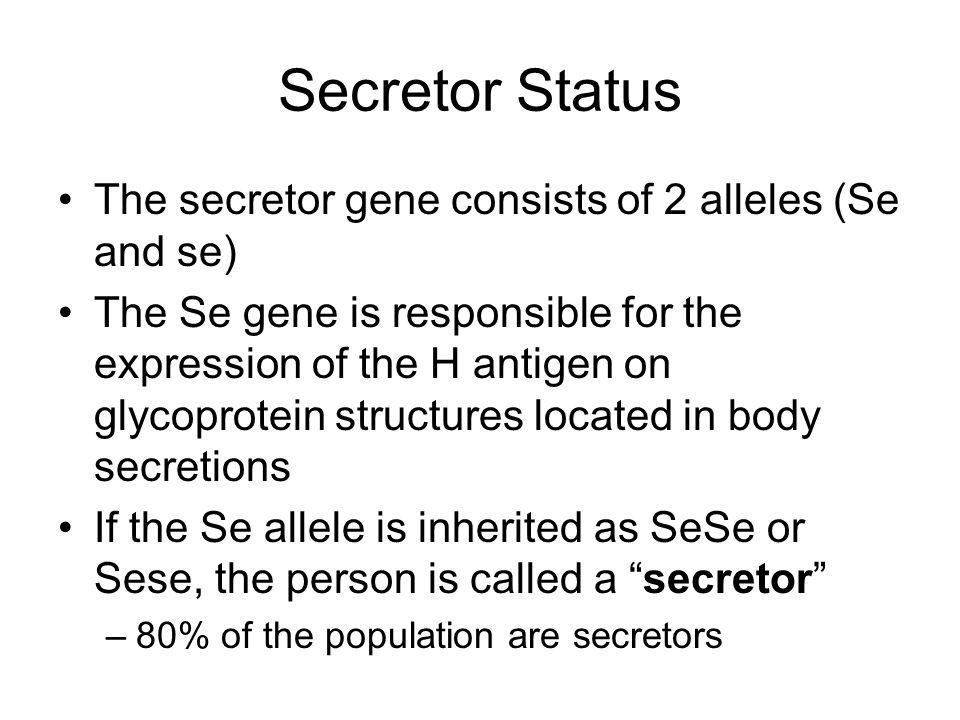 ABO Antigens in Secretions Secretions include body fluids like plasma, saliva, synovial fluid, etc Blood Group Substances are soluble antigens (A, B,
