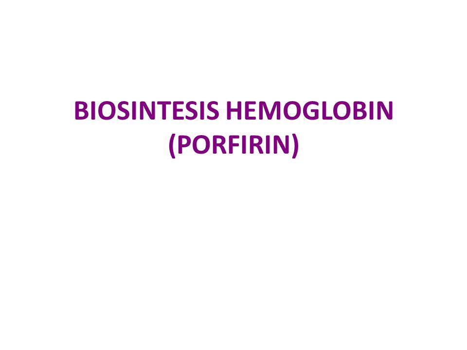 BIOSINTESIS HEMOGLOBIN (PORFIRIN)