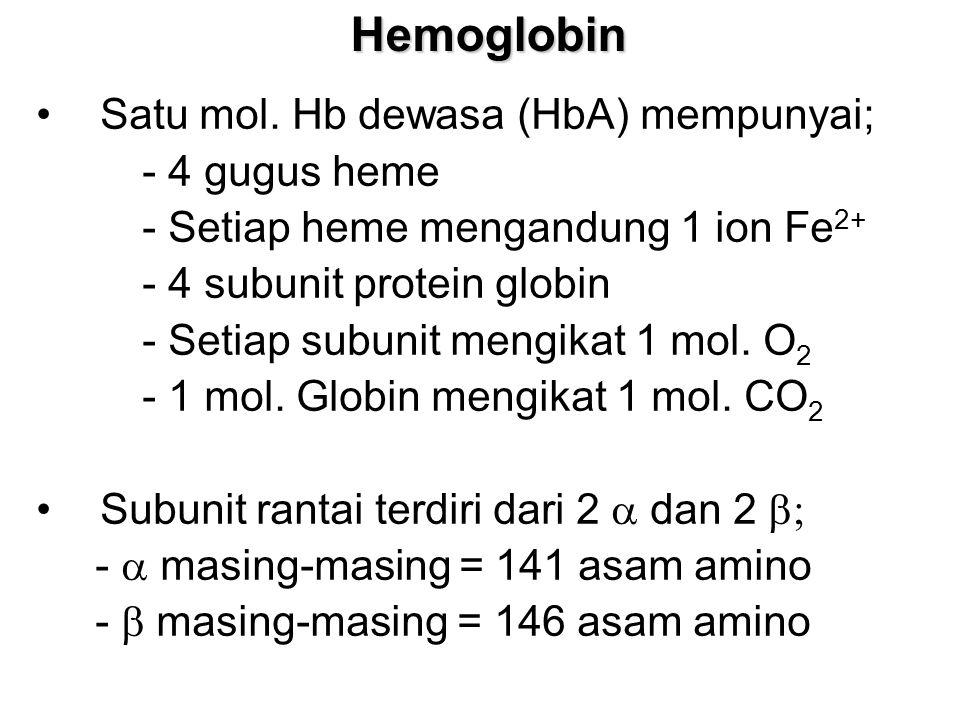 Hemoglobin Satu mol. Hb dewasa (HbA) mempunyai; - 4 gugus heme - Setiap heme mengandung 1 ion Fe 2+ - 4 subunit protein globin - Setiap subunit mengik