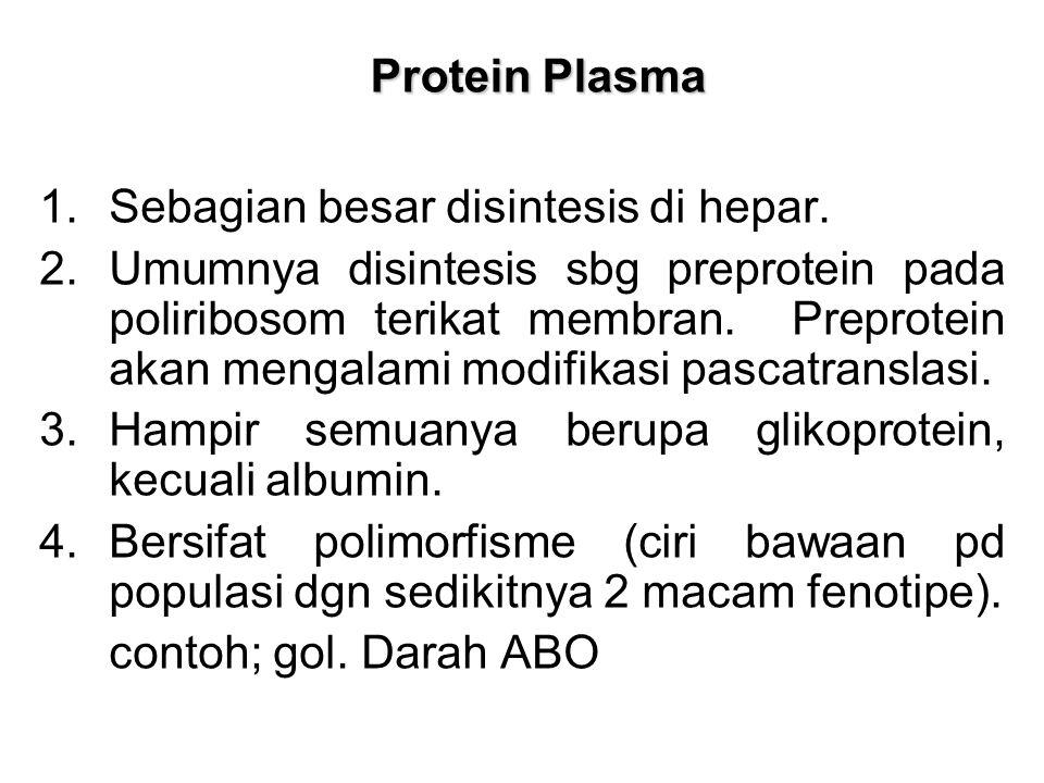 Protein Plasma Protein Plasma 1.Sebagian besar disintesis di hepar. 2.Umumnya disintesis sbg preprotein pada poliribosom terikat membran. Preprotein a
