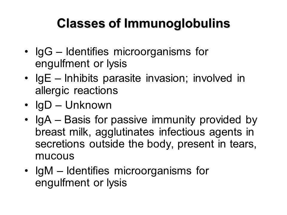 Classes of Immunoglobulins IgG – Identifies microorganisms for engulfment or lysis IgE – Inhibits parasite invasion; involved in allergic reactions IgD – Unknown IgA – Basis for passive immunity provided by breast milk, agglutinates infectious agents in secretions outside the body, present in tears, mucous IgM – Identifies microorganisms for engulfment or lysis
