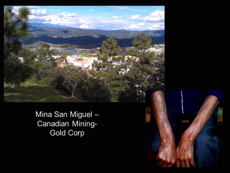 Mina San Miguel – Canadian Mining- Gold Corp