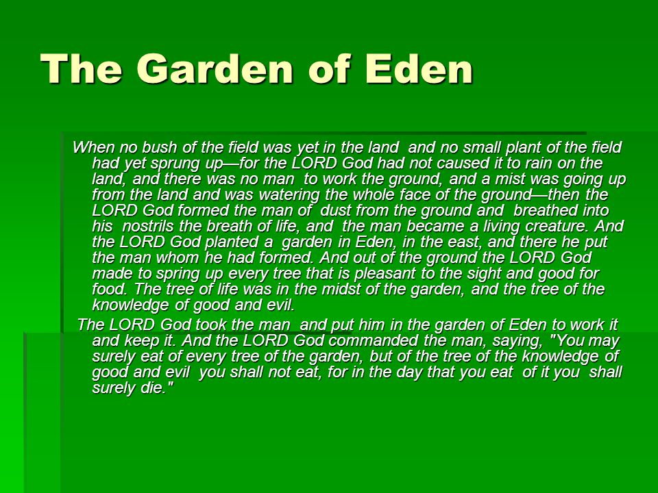 The Garden of Eden When no bush of the field was yet in the land and no small plant of the field had yet sprung up—for the LORD God had not caused it
