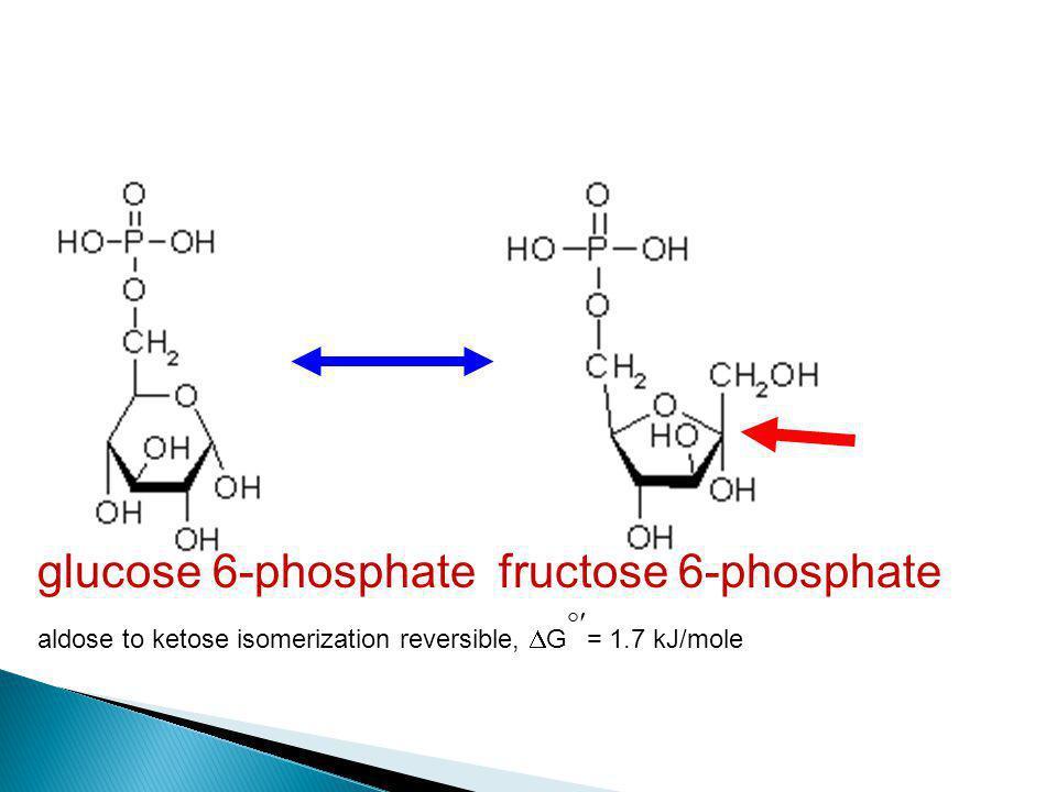 glucose 6-phosphate fructose 6-phosphate aldose to ketose isomerization reversible,  G  = 1.7 kJ/mole