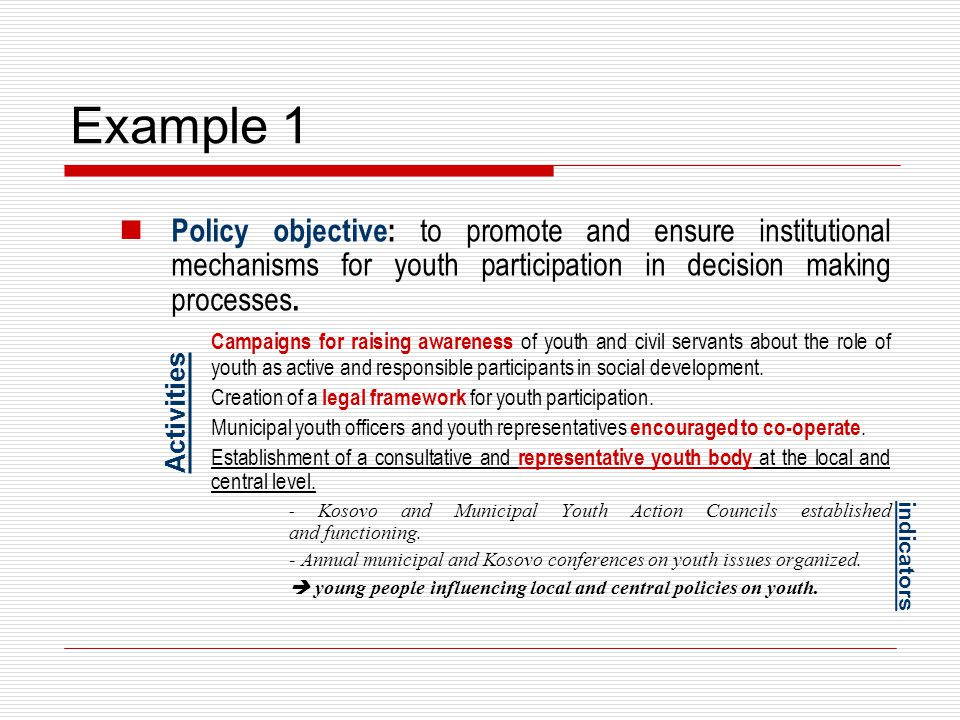 Example 1 Policy objective: to promote and ensure institutional mechanisms for youth participation in decision making processes. Campaigns for raising