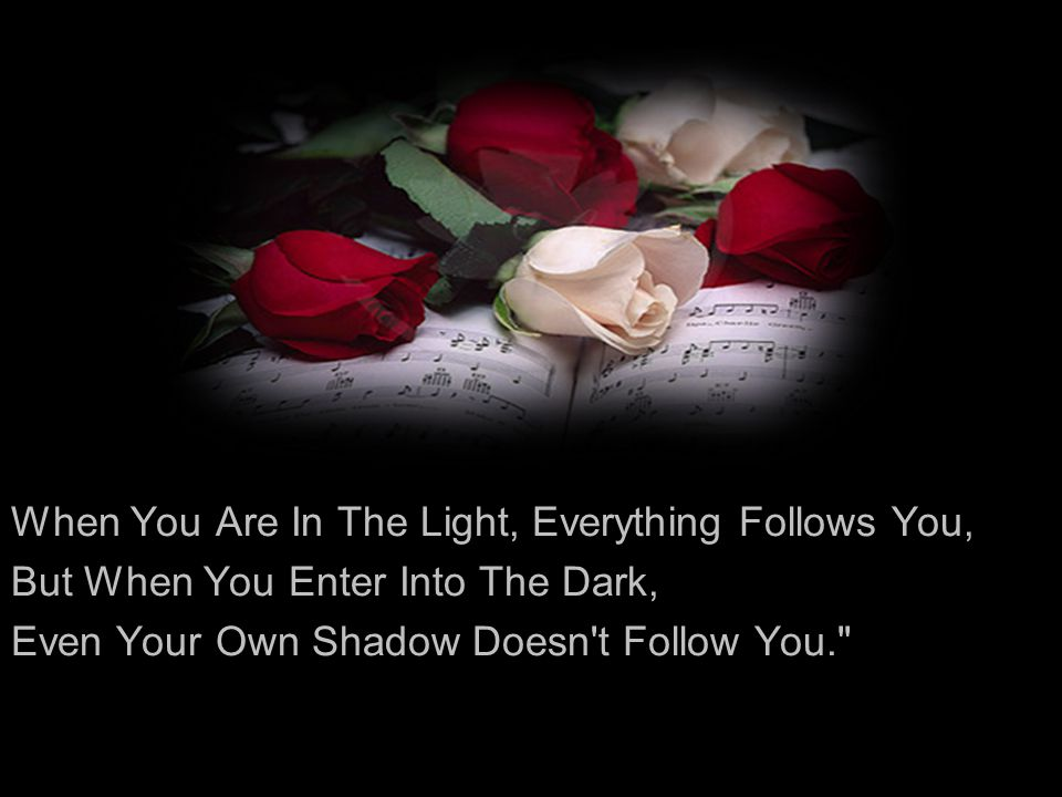 When You Are In The Light, Everything Follows You, But When You Enter Into The Dark, Even Your Own Shadow Doesn't Follow You.