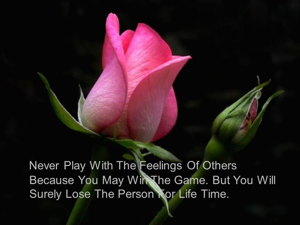 Never Play With The Feelings Of Others Because You May Win The Game. But You Will Surely Lose The Person For Life Time.