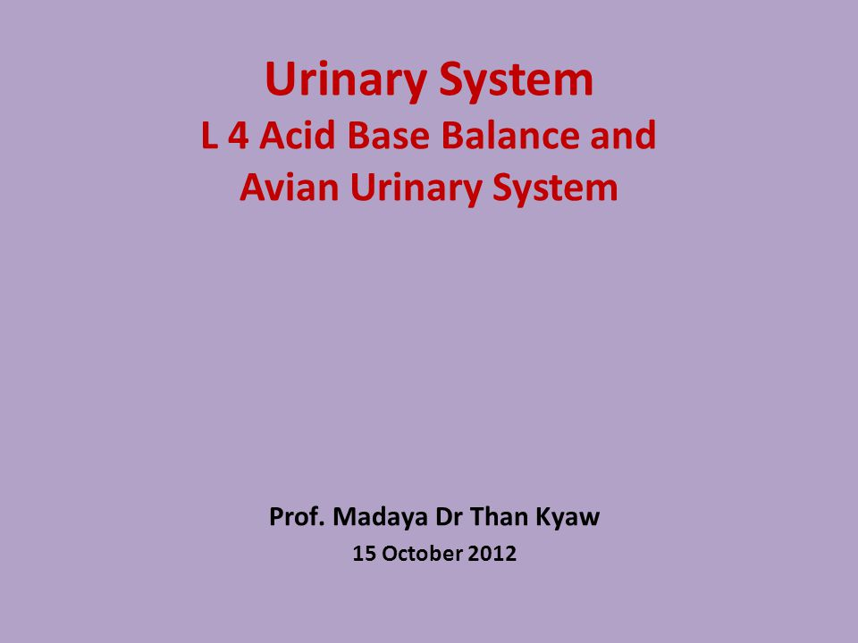 Avian Urinary System Many similarities and dissimilarities bet: birds and mammals Dissimilarities from mammals Birds Presence of 2 major nephron types Presence of renal portal system Formation of uric acid instead of urea as major end product of nitrogen metabolism Post-renal modification of ureteral urine