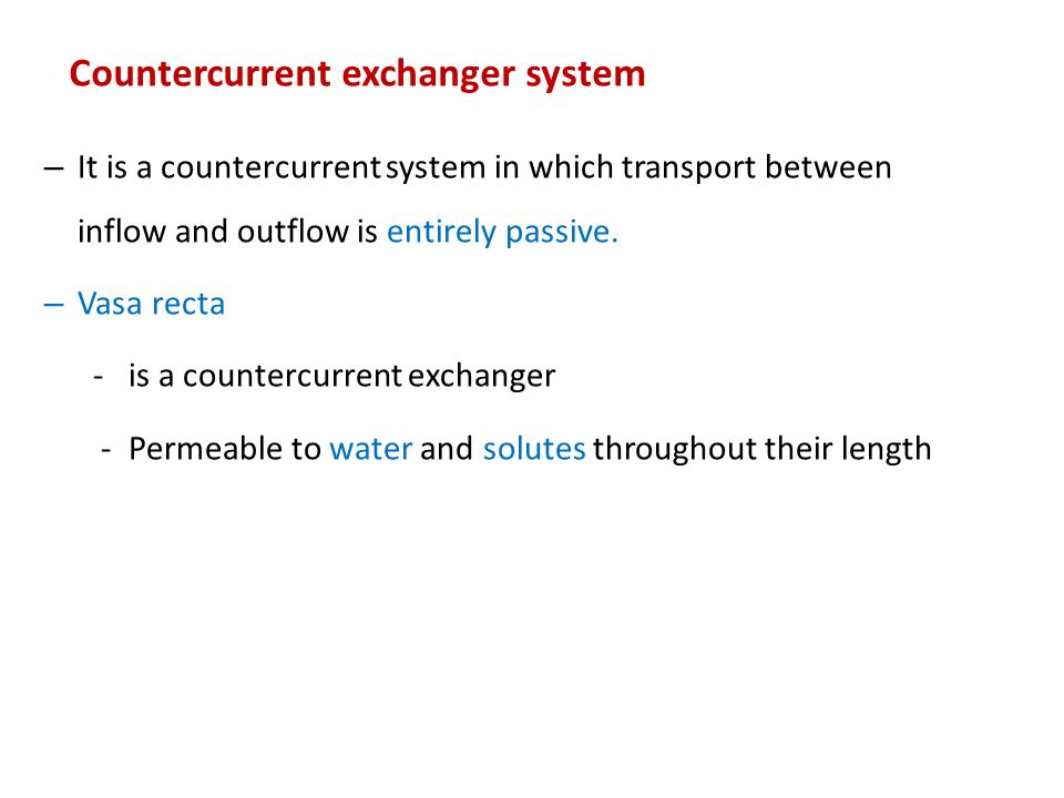 Countercurrent exchanger system – It is a countercurrent system in which transport between inflow and outflow is entirely passive. – Vasa recta - is a