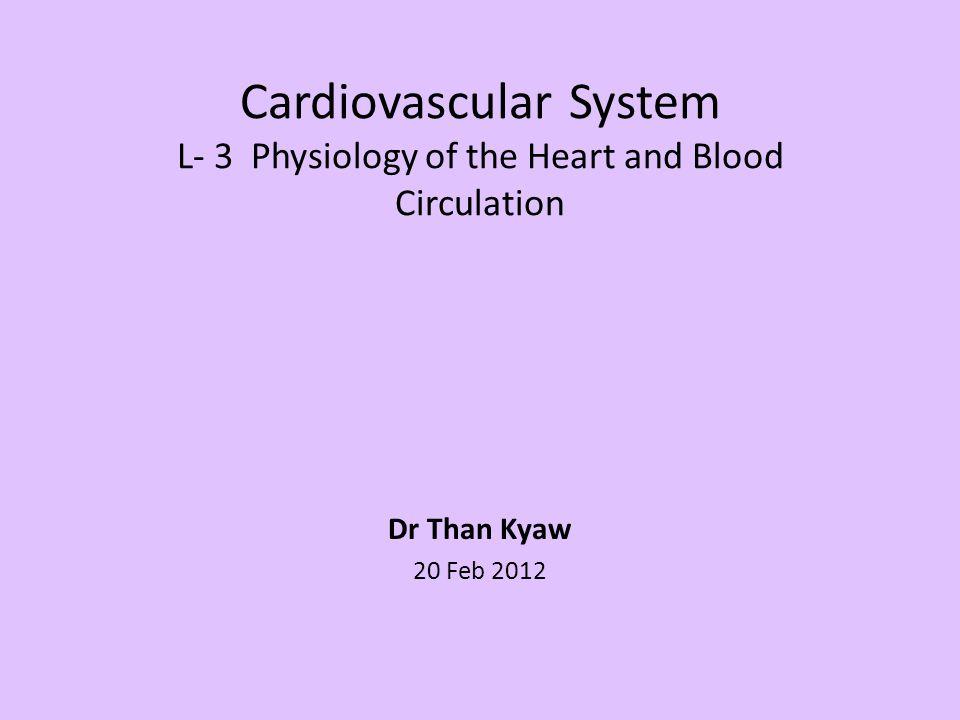 Functional anatomy of the heart, - pericardium, myocardium, cardiac muscle.