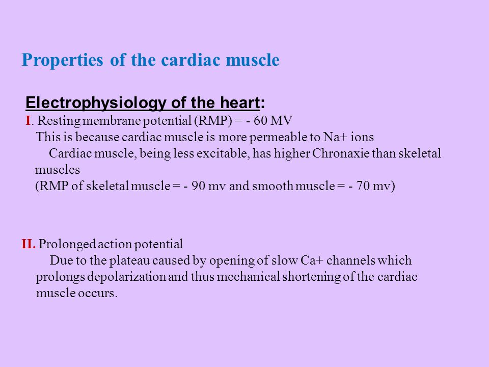 Properties of the cardiac muscle II. Prolonged action potential Due to the plateau caused by opening of slow Ca+ channels which prolongs depolarizatio