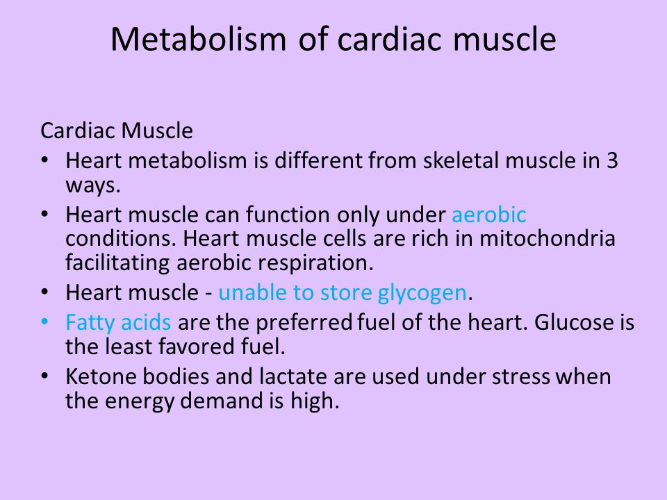 Metabolism of cardiac muscle Cardiac Muscle Heart metabolism is different from skeletal muscle in 3 ways. Heart muscle can function only under aerobic