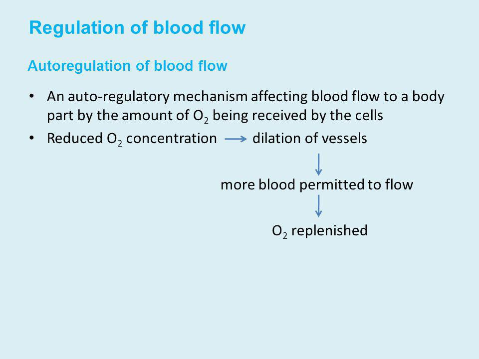 Autoregulation of blood flow An auto-regulatory mechanism affecting blood flow to a body part by the amount of O 2 being received by the cells Reduced