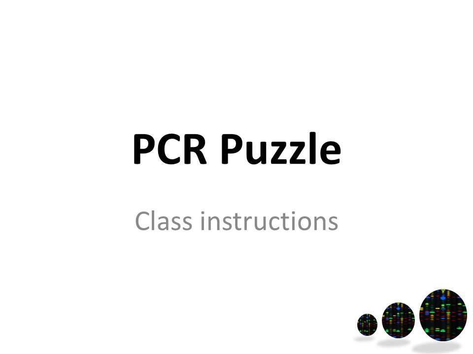 PCR Puzzle Class instructions