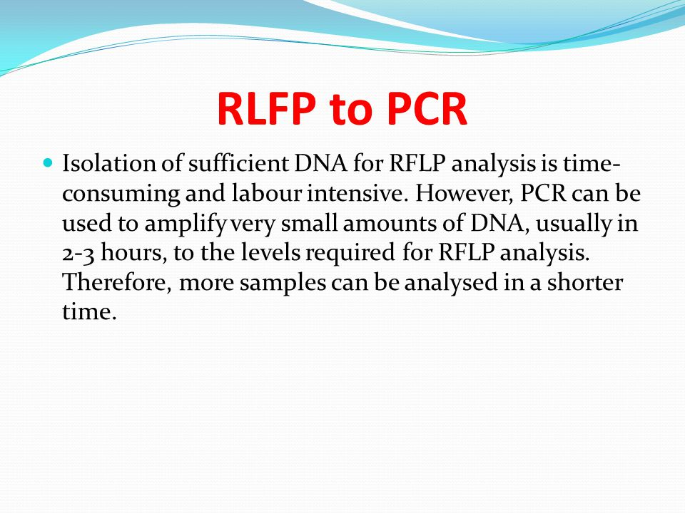 RLFP to PCR Isolation of sufficient DNA for RFLP analysis is time- consuming and labour intensive. However, PCR can be used to amplify very small amou