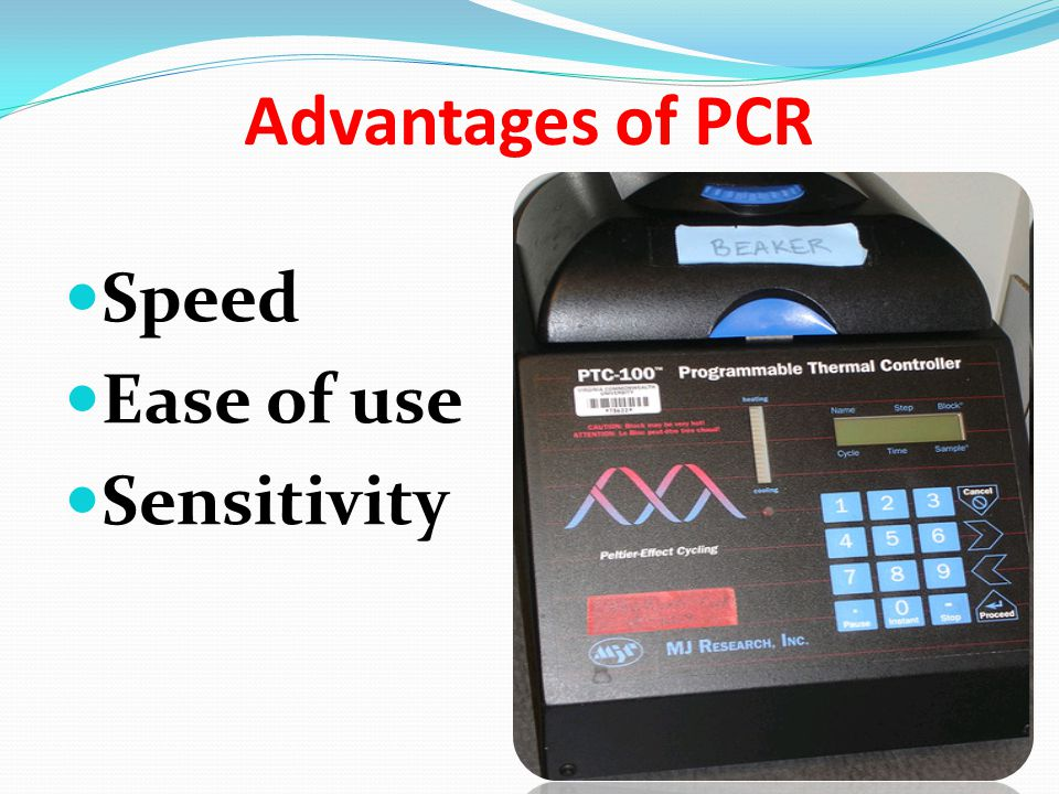 Advantages of PCR Speed Ease of use Sensitivity